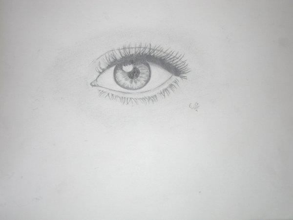 Encore des dessins. (x
