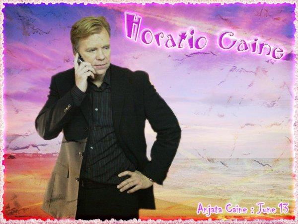 Pour les fans d'Horatio Caine..
