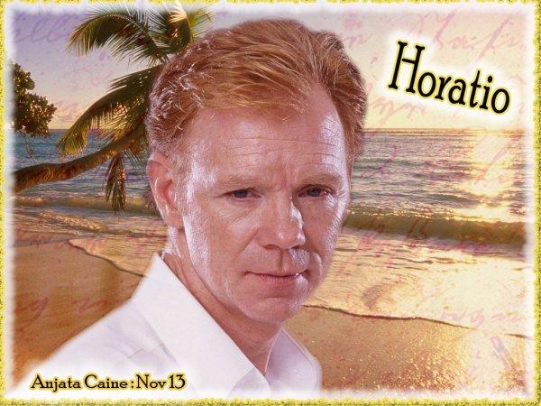 Qu'il me manque Horatio....