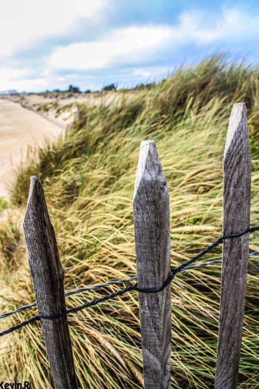 Dune de la plage des becs
