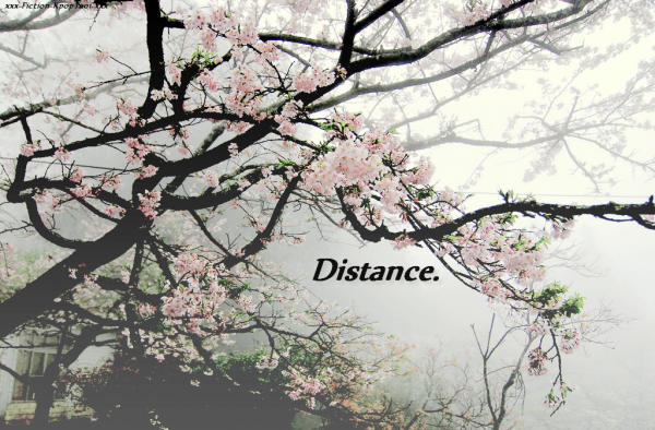 """Distance."" - Fiche infos ~"