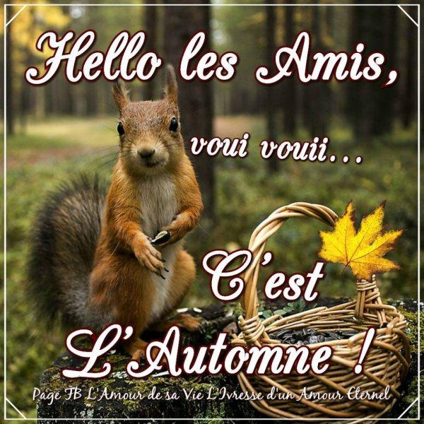 Bon mardi ! Bonjour l'automne !