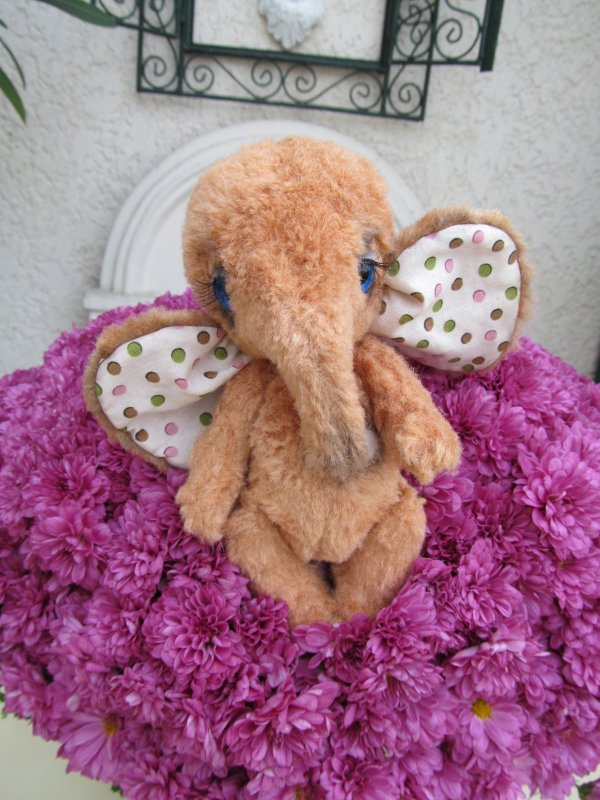 NESTOR BEBE ELEPHANT
