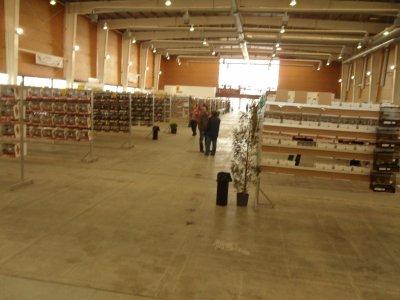 TALAVERA DE LA REINA 2011.-