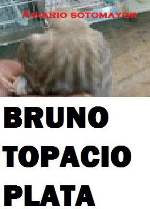 BRUNO TOPACIO PLATA.-