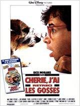 Chérie, J'ai Rétréci les Gosses (1989)
