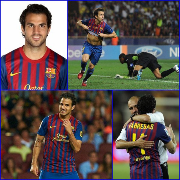Cesc Fabregas!!!!!