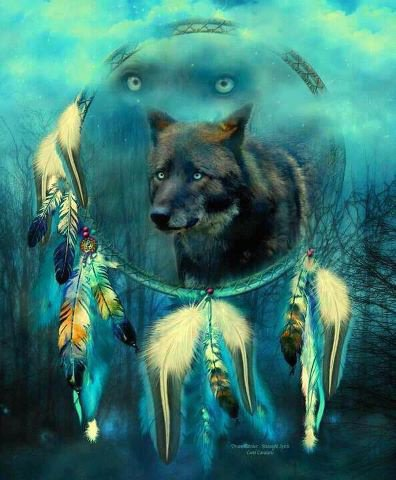 les loups sont magnifiques !!! <3