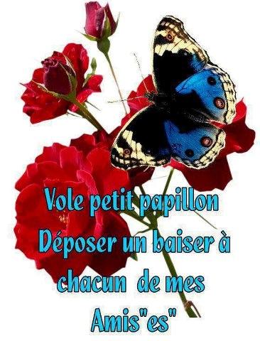 papillon bisous