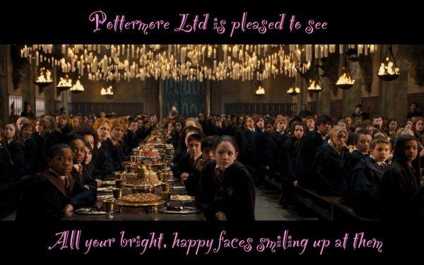 Harry Potter et la Folie des Grandeurs