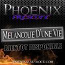 Photo de phoenix8z