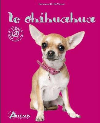 Le Chihuahua ♥