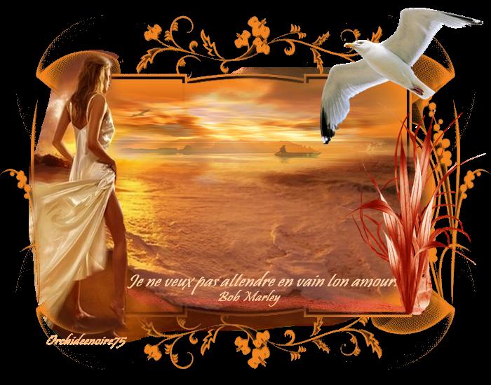 Quand vint la lumière du soir, dans ce monde illusoire, j'observe la beauté de ton c½ur qui varie selon ton humeur. Comment oublier notre histoire, qui malgré notre désespoir nous a permis de voir la lueur de l'espoir? Comment oublier que malgré notre attirance, nous avons découvert la souffrance, et qui malgré ton courroux m'a permis de te montrer mon amour semblable au scintillement d'un bijou. .