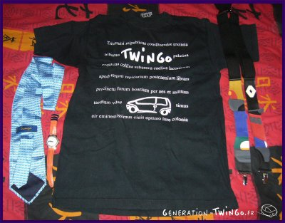 Twingo, une Passion, une Collection ! 2