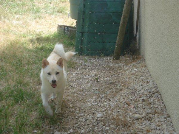 Yumi à ses 1 an