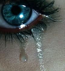 Chapitre 6 : Des larmes et encore des larmes...