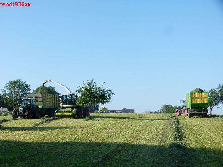 Ensilage d'herbes 014 (Lacroix)