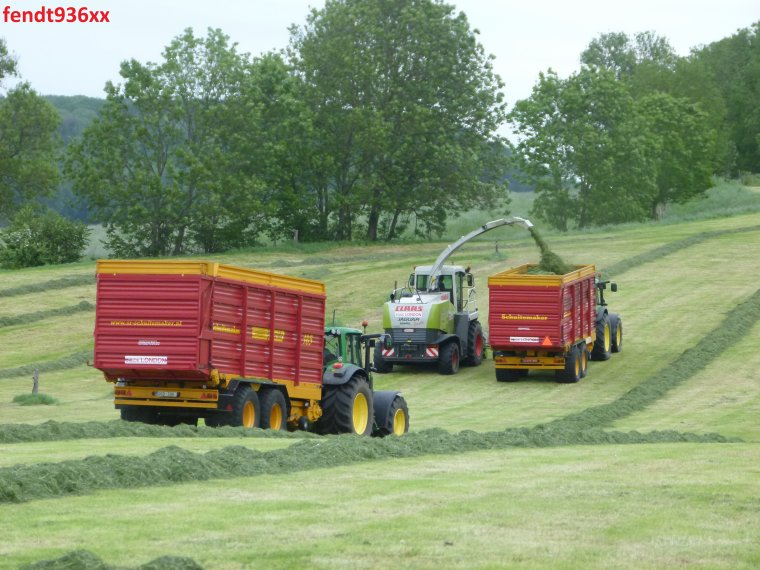 Ensilage d'herbes (Egide London)