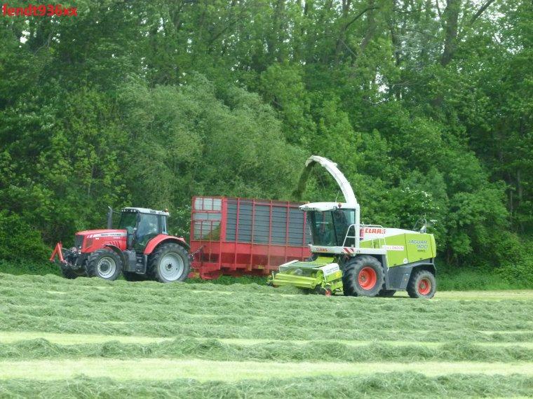 Ensilage d'herbes (Egide London)