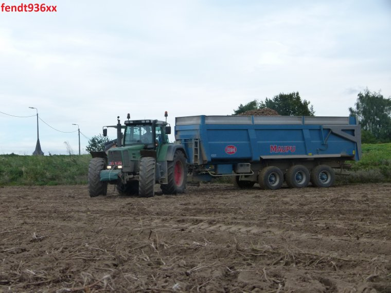 Arrachage PDT 015 (Van Hoven)