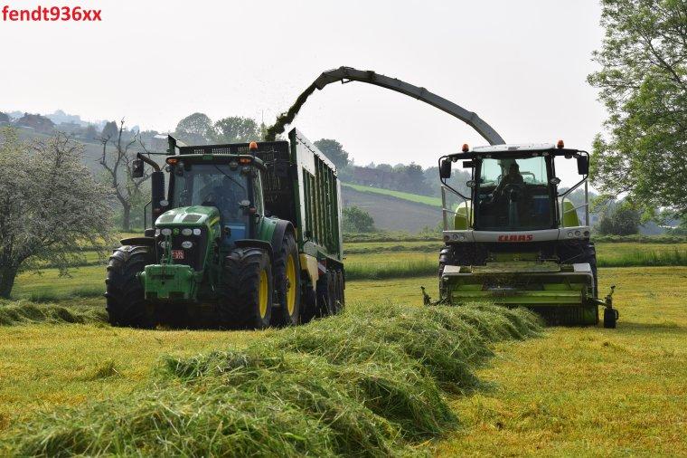 Ensilage d'herbes (Lacroix)
