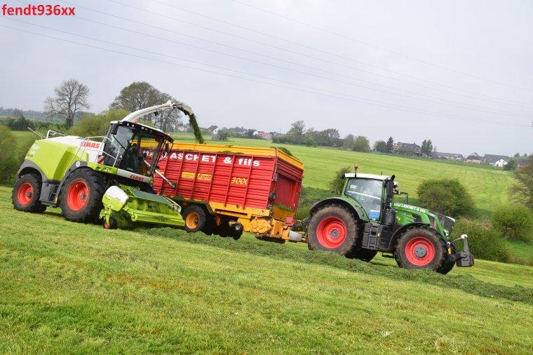 Ensilage d'herbes 017 (Vital Laschet & fils)