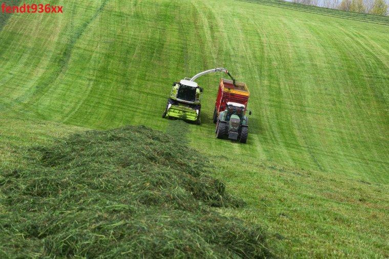 Ensilage d'herbes 017 (Vital Laschet & fis)