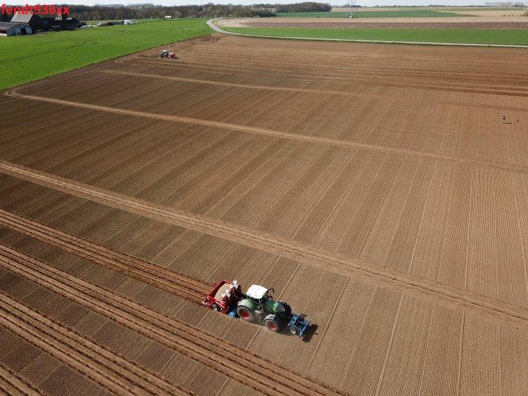 Plantation PDT (Van Hoven)