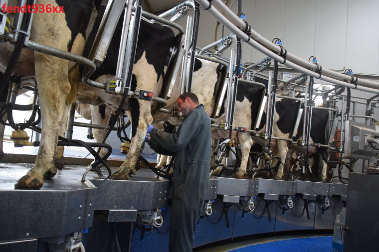 Traite des vaches en carrousel BouMatic 34 places