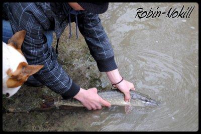 Petite aprem pêche au vers ....