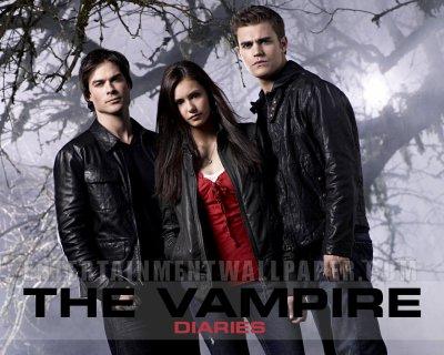 Présentation: Vampires Diaries