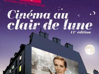 Festval cinéma au clair de lune 2012