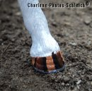 Photo de Charlene-Photos-Schleich