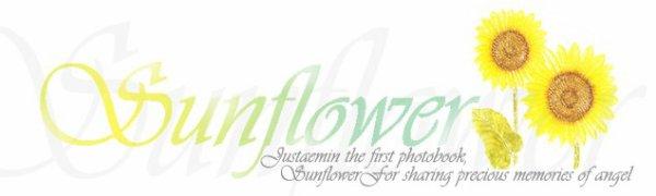 """{PRE-COMMANDE} Photobook + Mini DVD """"Sunflower"""" de JusTaemin ✰彡"""