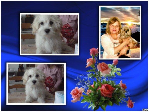 CADEAUX DE MES AMIES FRANOISE1 ET LOULOU1725 merci a toutes les deux bisous Anita