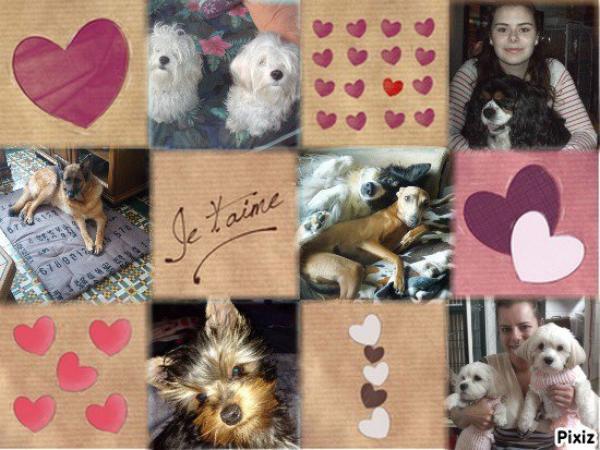 CADEAU DE MON AMIE LOULOU1725 merci c'est gentil bisous Anita