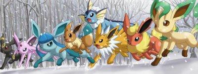 Histoire Pokemon