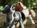 Photo de Grand-Prix-Schleich
