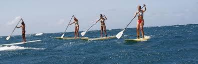 ce week end j'ai testé le paddle , j'ai adoré ;-)
