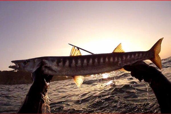 Barra 3,5 kg du 16/03/2014 avec vidéo