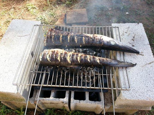 De la mer à la campagne pour un barbecue improvisé !