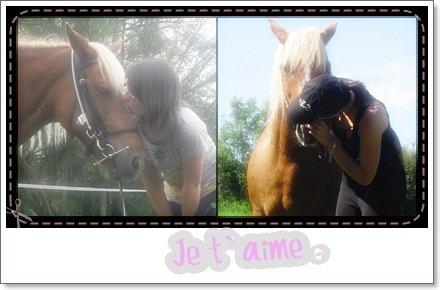 Ma Bouriquette, mon bonheur, Jenny ♥