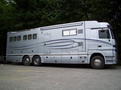 transport de chevaux