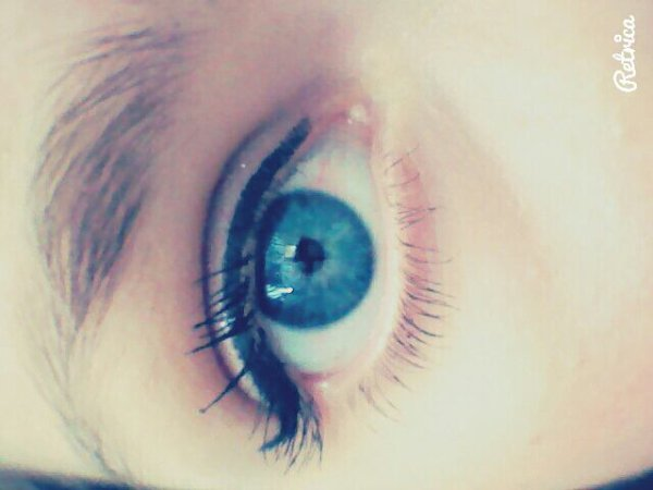 Mon oeil