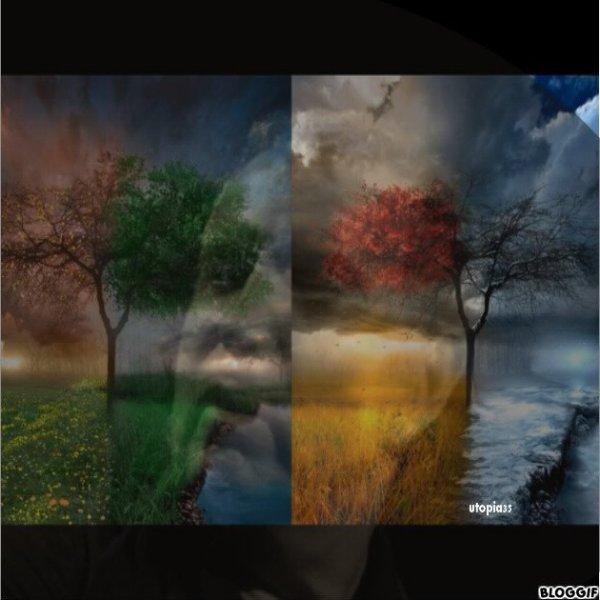 """Automne - Bernard Lavilliers / Julien Clerc Album """"Terrien"""",  sorti le 12 Février 2021"""