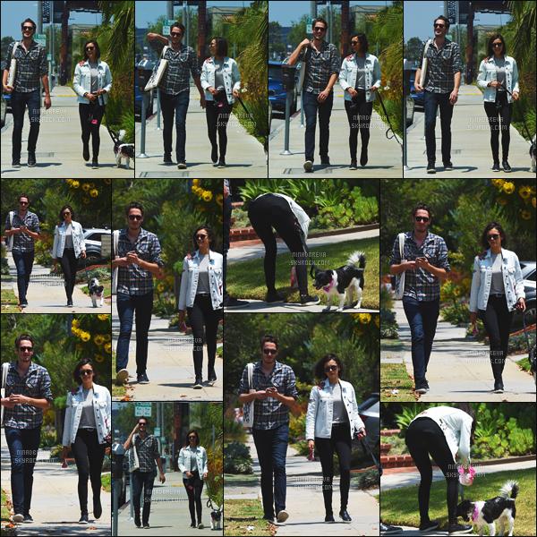 03/07/17: L'actrice Nina Dobrev a été photographiée se promenant avec un ami et son chien à Los Angeles. La petite tenue de Nina est très sympa, elle a le sourire aux lèvres j'aime vraiment ça chez elle - c'est un TOP ou un FLOP la tenue, pour vous ?