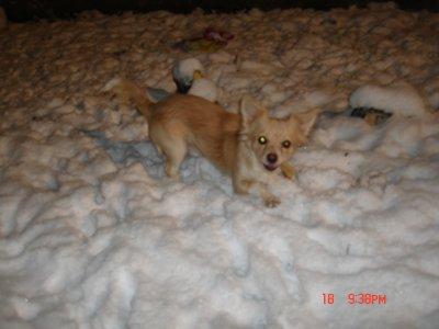 j adore la neige