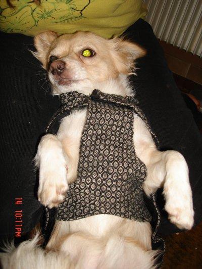 voila maman ma crée un manteau sur-mesur  il et beau  hihi  il et unique  qu'en panser vous ??????