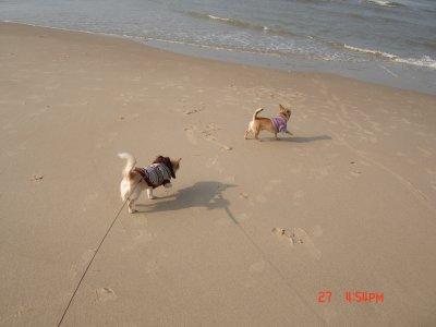 ma premier sorti a la plage accompagner de mon copain sisi