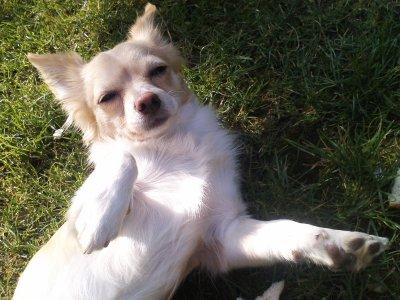 mon bébé profite du soleil